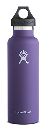 Hydro Flask 21 oz Vacuum Insulated Stainless Steel Water Bottle, Standard Mouth w/Loop Cap, Plum (Solid Water Jug compare prices)