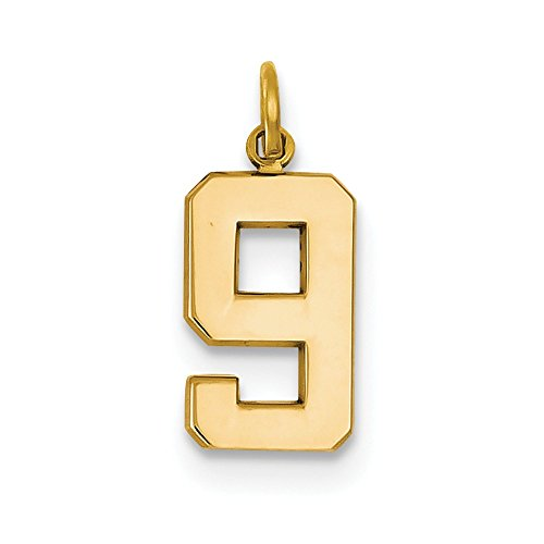14k Yellow Gold Casted Medium Polished Number 9 Charm Pendant (Gold Charm Numbers compare prices)
