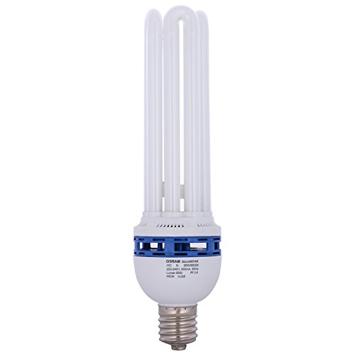 85 Watt CFL Bulb (White)