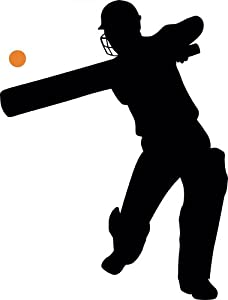 Amazon.com - Wall Wall Decals Cricket Silhouette - 6 - 12 inches x 9