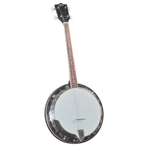 Four String Banjo