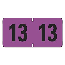 SMD68313 - Jeter-Compatible Year 2013 Labels