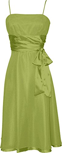 Chiffon Satin Dress Prom Formal Bridesmaid Holiday Party Cocktail
