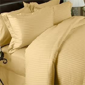 Egyptian Bedding 300 Thread Count Egyptian Cotton 300TC Sheet Set, Olympic Queen, Gold Stripe 300 TC