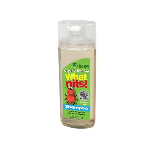 What Nits Tea Tree Shampoo 250ml