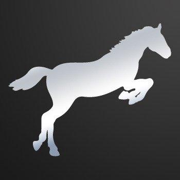 Horse... Chrome Mirror (07 X 5.7 inch) KR332
