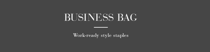 Handbags Business Bag