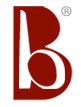 borsabag-llc.hostedbywebstore.com