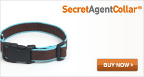 Paww Secret Agent Collar