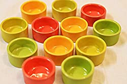Beautiful Reusable Stoneware Diyas (set of 10)
