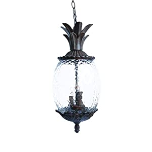 Alico lighting 7516bc acclaim lighting black coral finished outdoor pendant with for Pineapple exterior light fixtures