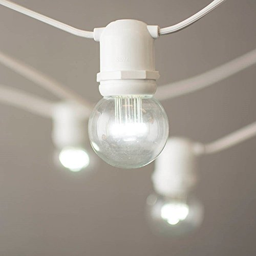 Led Globe String Lights Commercial Grade 48 Foot White Wire 2 Inch G50 Bulbs G50 Decor Home