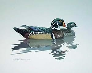 Richard Sloan (Wood Ducks in Water) Art Poster Print Mini Poster Mini Poster Print, 13x10