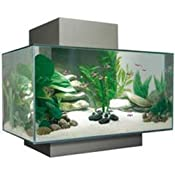 Amazon.com: Fluval Edge Aquarium Set, Pewter, 6-Gallon: Pet Supplies