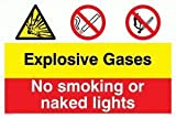 Explosive gases No smoking or naked lights - Warning Sign