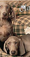 Classic Check Dog Box Duvet Cover Size: Medium (88cm x 67cm x 14cm) from Danish Design