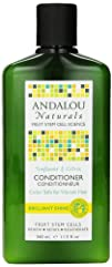 Andalou Naturals Healthy Shine Conditioner Sunflower Citrus