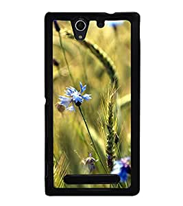 Blue Flowers 2D Hard Polycarbonate Designer Back Case Cover for Sony Xperia C3 Dual :: Sony Xperia C3 Dual D2502