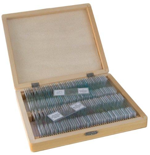 Bresser Dauerpräparate für Mikroskop (100-er Stück)