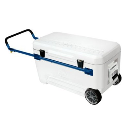 Igloo Glide Marine Ultra Cooler (White/Blue, 110-Quart) (White Roller Cooler compare prices)