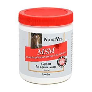 Nutri-Vet MSM Support for Equine Joints, 16-Ounce
