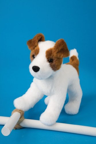 feisty-jack-russell-75