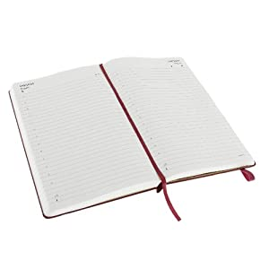 Daily diary/planner - large. Hard cover, magenta