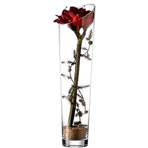 leonardo vase 60 cm mit deko rot k che haushalt. Black Bedroom Furniture Sets. Home Design Ideas