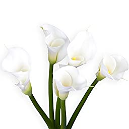 36 Fresh Open Cut White Calla Lilies | Fresh Flowers Express Delivery | Perfect for Birthdays, Anniversary or any occasion.
