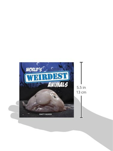 World's Weirdest Animals
