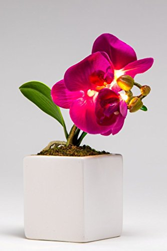 Artificial Small LED Purple Orchid flower sq vase(Pack of 2)