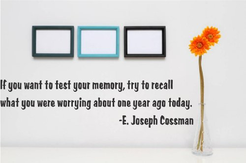 Decal - Vinyl Wall Sticker : If You Want To Test Your Memory, Try To Recall What You Were Worrying About One Year Ago Today. - E. Joseph Cossman Quote Home Living Room Bedroom Decor - Discounted Sale Item - 22 Colors Available Size: 8 Inches X 20 Inches front-39993