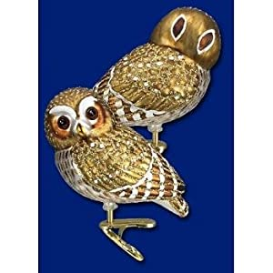 #!Cheap Old World Christmas Glass Ornament - Pygmy Owl