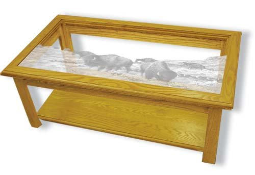 Buy low price oak glass top coffee table with black bear for Unique coffee tables cheap