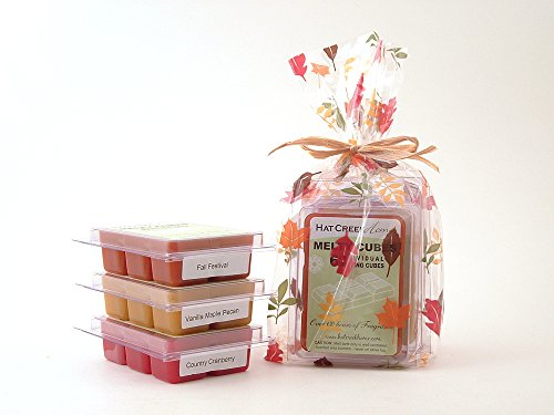 Autumn Splendor 3Pk Melty Cube Scented Wax Melt Sampler Features 3 Fall Fragrances Including Fall Festival (A Spicy Cinnamon Blend), Vanilla Maple Pecan (A Nuttery Buttery Bakery-Type Favorite), And Country Cranberry (A Bold Not Too Tart - Not Too Sweet F