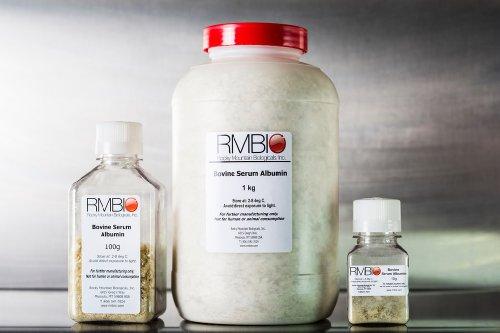 Bovine Serum Albumin, Heat Shock, Rmbio Bsa-Bsh-25G