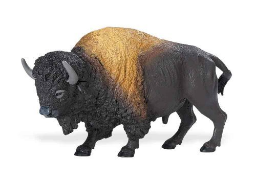 Safari Ltd Wild Safari North American Wildlife - Bison - Realistic Hand Painted Toy Figurine Model - Quality Construction From Safe and BPA Free Materials - For Ages 3 and Up