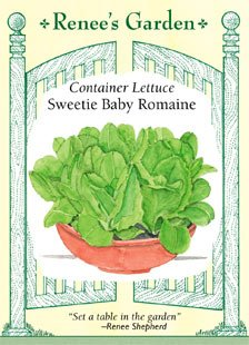 Container Lettuce Seeds - Sweetie Baby Romaine