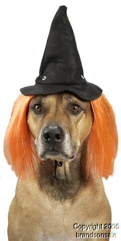 Pet Witch Dog Costume Hat For Large Dogs