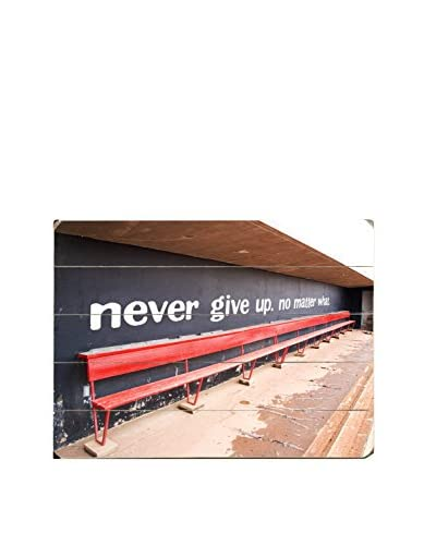 ArteHouse Never Give Up Wood Wall Sign  [Blue/Red]