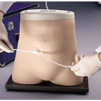 C.A.P.D. (Peritoneal Dialysis) Simulator