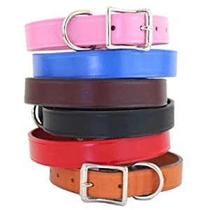 """Town Dog Collar Size: 1"""" x 24"""", Color: Burgundy"""