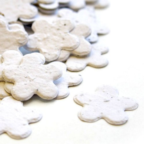 Baby Shower Flower Seed Favors