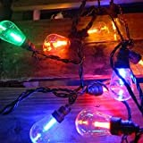 Commercial Led Edison String Lights - 25 Multicolor Globes - Black Wire