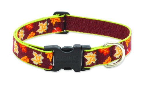 Buy Lupine 1″ Adjustable Collars – Oak & Maple – 12″-20″