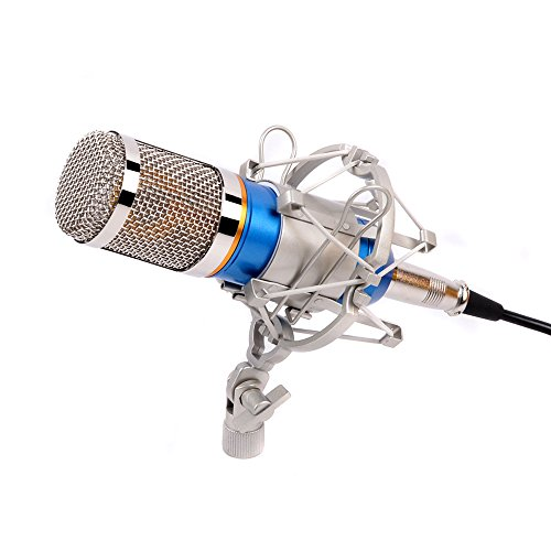 Ohuhu-Studio-Recording-Condenser-Pro-Microphone-with-Metal-Shock-Mount-Holder-ClipSilver