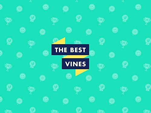 The Best Vines - Season 1