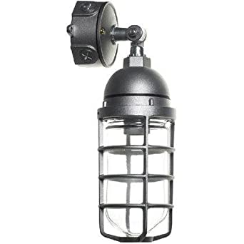 Amazon.com : RAB Lighting Vaporproof Adjustable Outdoor Pendant