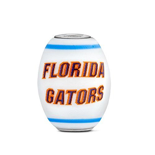 Florida Gators Large Glass Bead Fits Most European Style Bracelets