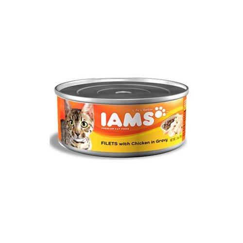 Iams Proactive Health Filets - Chicken In Gravy - 12X5.5Oz